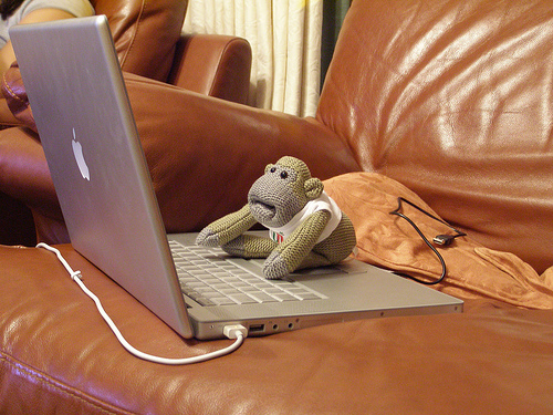 Monkey on a Mac image